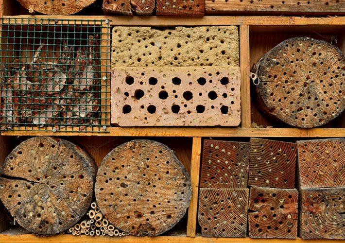 byg-dit-eget-insekthotel-web