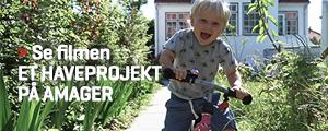 Haveprojekt Amager
