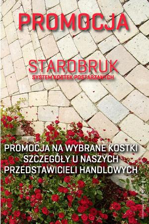 Promocja - Kostka IBF Starobruk