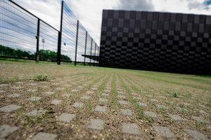 ibf-hollaendergraesarmering