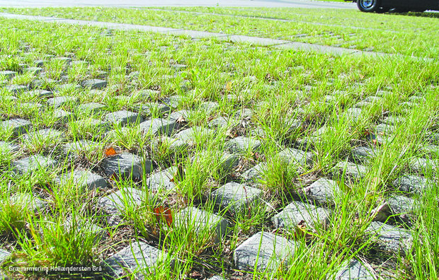 Græsarmering hollændesten